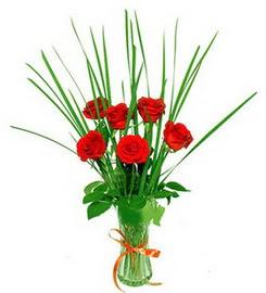 Kıbrıs hediye çiçek yolla  6 adet kırmızı güllerden vazo çiçeği
