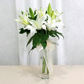 Kıbrıs çiçek online çiçek siparişi  2 dal kazablanka ile yapılmış vazo çiçeği