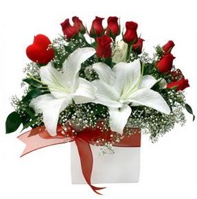 Kıbrıs internetten çiçek satışı  1 dal kazablanka 11 adet kırmızı gül vazosu