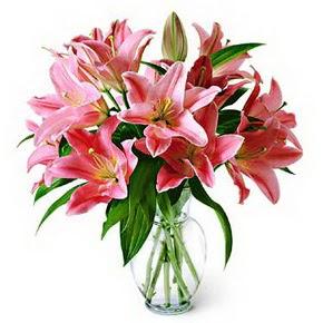 3 dal kazablanka görsel vazosu  Kıbrıs online çiçek gönderme sipariş