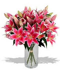 4 dal cazablanca görsel vazosu  Kıbrıs internetten çiçek satışı
