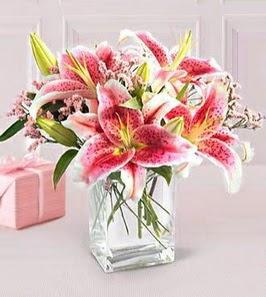 2 dal kazablanka görsel vazosu  Kıbrıs çiçekçiler