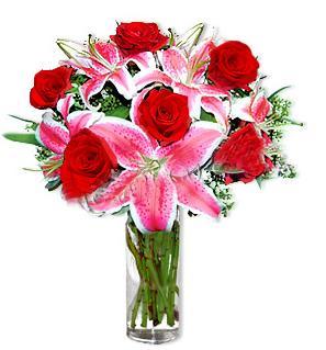 Kıbrıs çiçekçi telefonları  1 dal cazablanca ve 6 kırmızı gül çiçeği