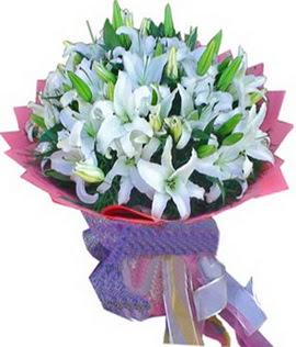 7 dal cazablanca görsel buketi  Kıbrıs internetten çiçek satışı