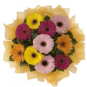 Kıbrıs çiçek yolla  11 adet karışık gerbera çiçeği buketi