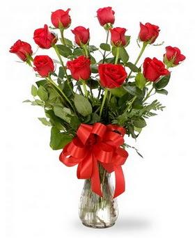 Kıbrıs hediye çiçek yolla  12 adet kırmızı güllerden vazo tanzimi