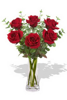 Kıbrıs internetten çiçek satışı  6 kırmızı gül vazosu