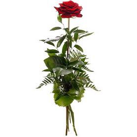 Kıbrıs İnternetten çiçek siparişi  1 adet kırmızı gülden buket
