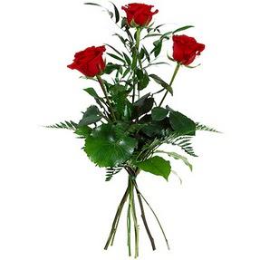 Kıbrıs anneler günü çiçek yolla  3 adet kırmızı gülden buket