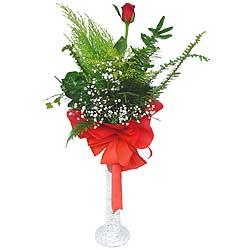 Kıbrıs çiçek online çiçek siparişi  Cam vazoda masum tek gül