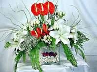 Kıbrıs güvenli kaliteli hızlı çiçek  Anthurim Kazablanka  gül