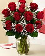 Sevgilime hediye 9 adet 1.ci kalite gül  Kıbrıs çiçek online çiçek siparişi