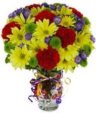 En güzel hediye karışık mevsim çiçeği  Kıbrıs çiçek siparişi sitesi