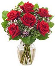 Kız arkadaşıma hediye 6 kırmızı gül  Kıbrıs online çiçek gönderme sipariş