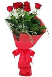 Çiçek yolla sitesinden 7 adet kırmızı gül  Kıbrıs internetten çiçek siparişi