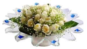 Kıbrıs çiçek mağazası , çiçekçi adresleri  11 adet Beyaz güller özel cam tanzim