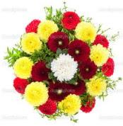 Kıbrıs internetten çiçek satışı  13 adet mevsim çiçeğinden görsel buket