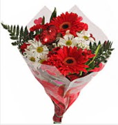 Mevsim çiçeklerinden görsel buket  Kıbrıs çiçek siparişi vermek