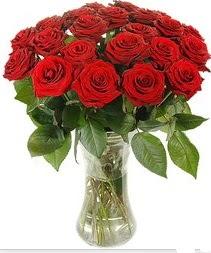 Kıbrıs güvenli kaliteli hızlı çiçek  Vazoda 15 adet kırmızı gül tanzimi