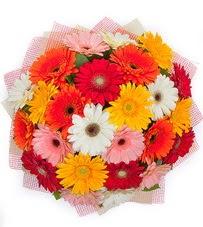 15 adet renkli gerbera buketi  Kıbrıs çiçek yolla , çiçek gönder , çiçekçi
