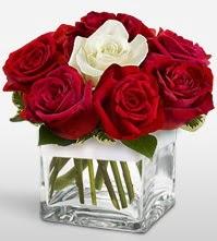 Tek aşkımsın çiçeği 8 kırmızı 1 beyaz gül  Kıbrıs anneler günü çiçek yolla