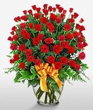 Görsel vazo içerisinde 101 adet gül  Kıbrıs uluslararası çiçek gönderme
