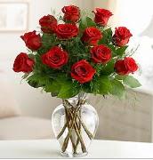 Vazo içerisinde 12 kırmızı gül  Kıbrıs ucuz çiçek gönder