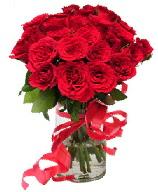 21 adet vazo içerisinde kırmızı gül  Kıbrıs ucuz çiçek gönder
