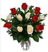 Vazo içerisinde 6 kırmızı 6 beyaz gül  Kıbrıs çiçek siparişi sitesi