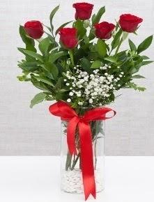 cam vazo içerisinde 5 adet kırmızı gül  Kıbrıs 14 şubat sevgililer günü çiçek