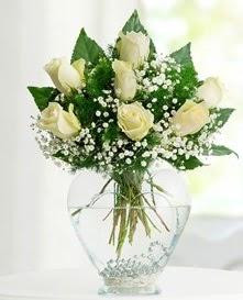 Cam içerisinde 7 adet beyaz gül  Kıbrıs 14 şubat sevgililer günü çiçek