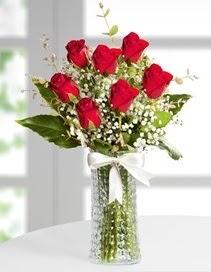 Cam vazoda 7 adet kırmızı gül  Kıbrıs hediye çiçek yolla