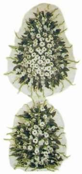 Kıbrıs çiçek siparişi vermek  Model Sepetlerden Seçme 3
