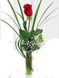 Cam içerisinde 1 kırmızı gül  Kıbrıs çiçek gönderme