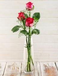 Cam içerisinde 3 kırmızı gül  Kıbrıs ucuz çiçek gönder