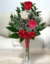 Camda 2 kırmızı 1 beyaz gül  Kıbrıs çiçekçi mağazası