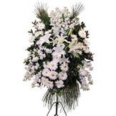 Kıbrıs uluslararası çiçek gönderme  Ferforje beyaz renkli kazablanka