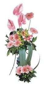 Kıbrıs online çiçekçi , çiçek siparişi  Pembe Antoryum Harikalar Rüyasi