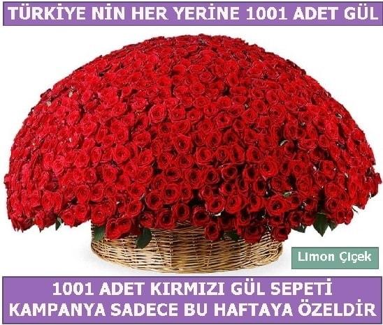 1001 Adet kırmızı gül Bu haftaya özel  Kıbrıs çiçek yolla