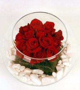 Cam fanusta 11 adet kırmızı gül  Kıbrıs çiçek satışı