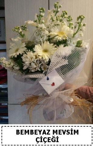 Bembeyaz görsel mevsim çiçek buketi  Kıbrıs çiçekçi telefonları