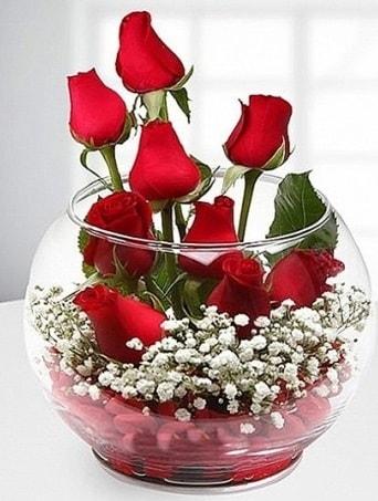 Kırmızı Mutluluk fanusta 9 kırmızı gül  Kıbrıs çiçekçiler