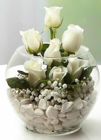Beyaz Mutluluk 9 beyaz gül fanusta  Kıbrıs çiçekçiler