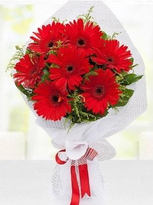Kırmızı Gelbera Buketi  Kıbrıs online çiçek gönderme sipariş
