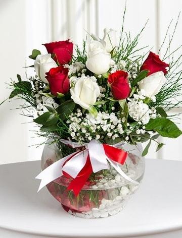 Aşk Küresi  5 beyaz 5 kırmızı gül fanusta  Kıbrıs internetten çiçek siparişi