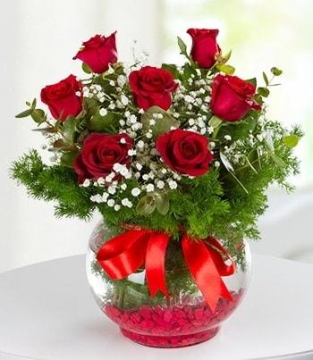 fanus Vazoda 7 Gül  Kıbrıs hediye çiçek yolla