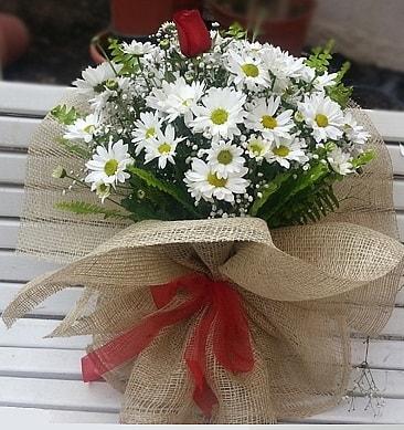 Papatya 1 adet kırmızı gül buketi  Kıbrıs çiçek siparişi vermek