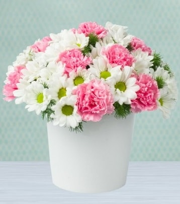 Seramik vazoda papatya ve kır çiçekleri  Kıbrıs çiçekçiler
