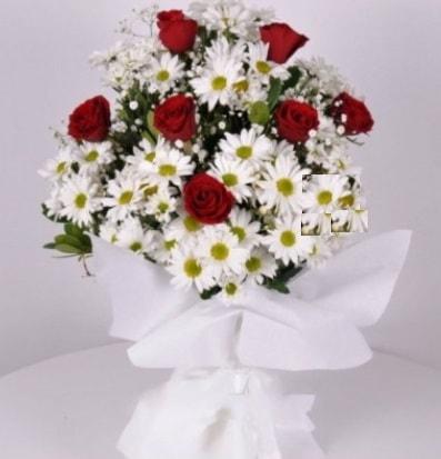 7 adet kırmızı gül ve papatyalar krizantem  Kıbrıs internetten çiçek siparişi