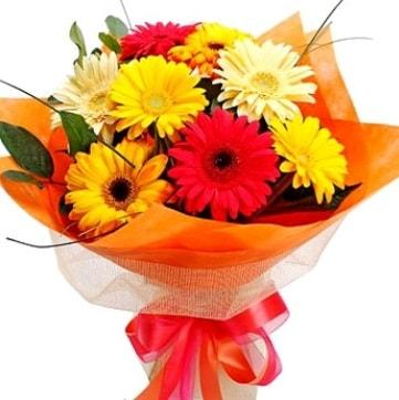 9 adet karışık gerbera buketi  Kıbrıs hediye çiçek yolla